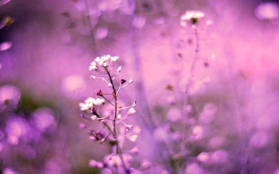 Pink Flowers live wallpaper screenshot 3
