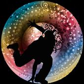 Disco Inferno Pro icon