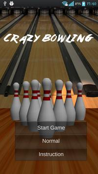 Crazy Bowling poster