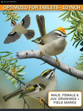 iBird Lite Free Guide to Birds apk screenshot