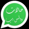 arabic whatsapp