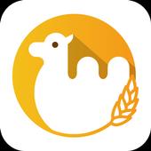 駱駝吃小麥 icon