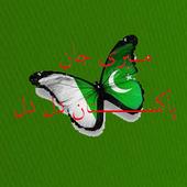 Meri Jan Pakistan Dil Dil icon