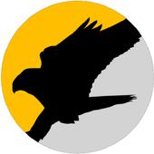 FalcoMoni icon