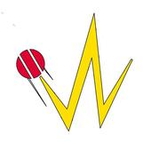 1WicketDown icon