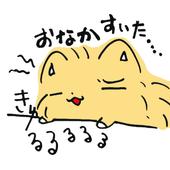 ワイフードサーチ icon