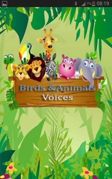 Birds and Animals voices apk screenshot