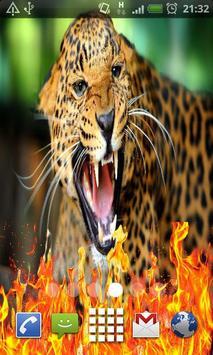 Wild Animal Live Wallpaper poster