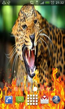 Wild Animal Live Wallpaper apk screenshot