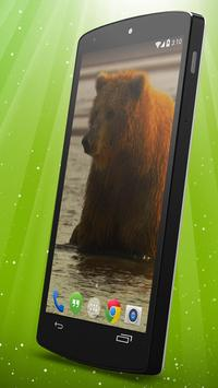 Brown Bear Live Wallpaper apk screenshot