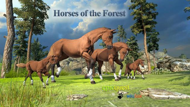 Horses of the Forest poster