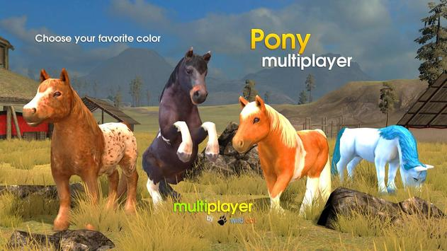 Pony Multiplayer poster