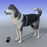 Snow Dog Survival Simulator