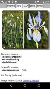 Alberta Wildflowers screenshot 3
