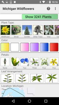 Michigan Wildflowers poster