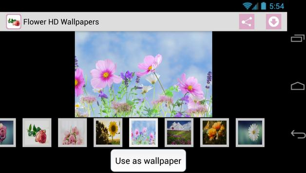 Flower HD Wallpapers poster
