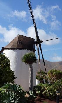 Windmill Wallpaper screenshot 2