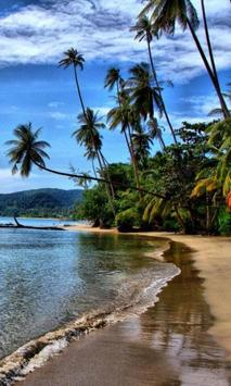 300 HD Amazing Beach Pictures screenshot 5