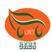 Obey Partner icon