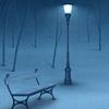 Lwp 冬天的夜晚 圖標