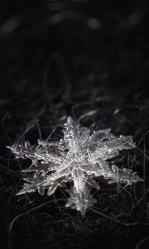 Winter Snowflakes Wallpaper apk screenshot