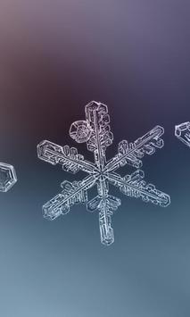 Winter Snowflakes Wallpaper poster