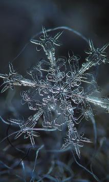 Winter Snowflakes Wallpaper screenshot 2