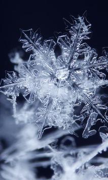 Winter Snowflakes Wallpaper screenshot 4