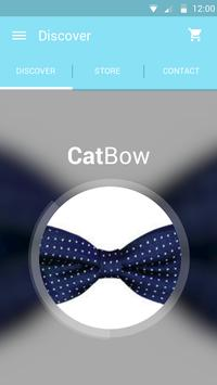 Cat Bow poster