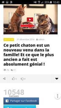 Le Petit Buzz apk screenshot