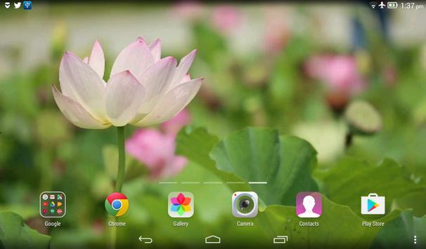 Lotus Flower Live Wallpaper apk screenshot