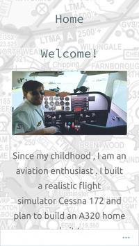Flight Sim Liberty poster