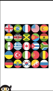 Guess the Flag poster