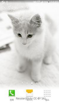 white shiny cat wallpaper apk screenshot