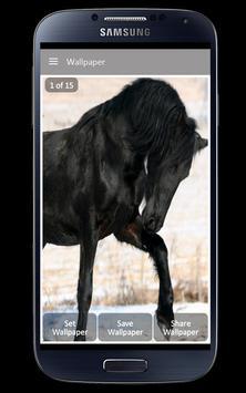 Black Horse Wallpaper screenshot 3