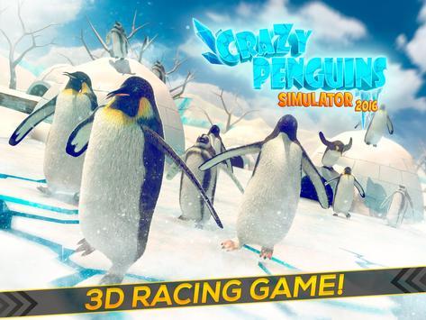 Cute Penguins Simulator 2017 apk screenshot