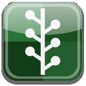 sivabeta1 icon