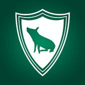 Palmeiras Mil Grau icon