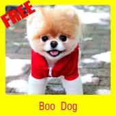 boo dog icon