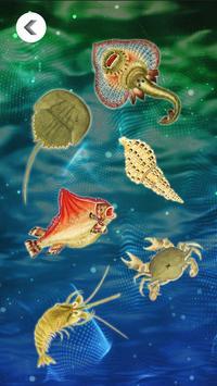 海錯奇珍 Marvels within the Sea apk screenshot