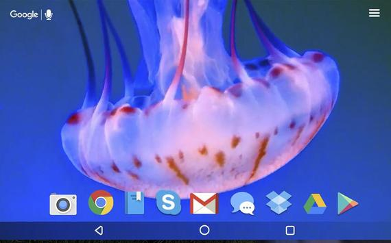 Amazing Jellyfish Live apk screenshot