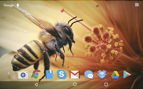 Bee and Flower Live Wallpaper apk screenshot