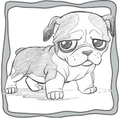 Coloring Book Education icon