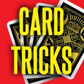 Card Magic Tricks Revealed  V1 icon