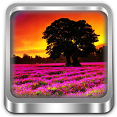 Galaxy S6 Lavender HD WP icon