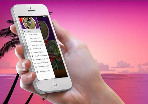Coleiro Tui Tui Mestre HD apk screenshot