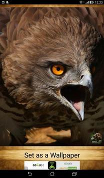 Eagle Wallpapers ( OFFLINE ) screenshot 4