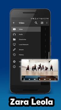 Lagu Zara Leola Video Dance screenshot 3