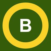 Wallet Balance icon