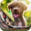 Lovely Puppy Puzzle Kit & Wallpapers icon